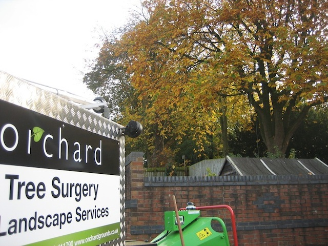 Orchard Tree Services in Carlisle, Cumbria